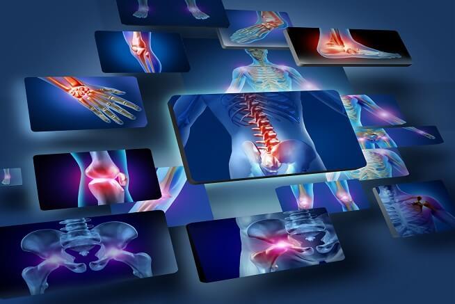 Pós Graduação em Anatomia e Fisiologia Aplicada à Osteopatia