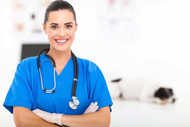 Pós Graduação em MBA em Gestão de Negócios para Clínicas e Hospitais Veterinários (Sábado)